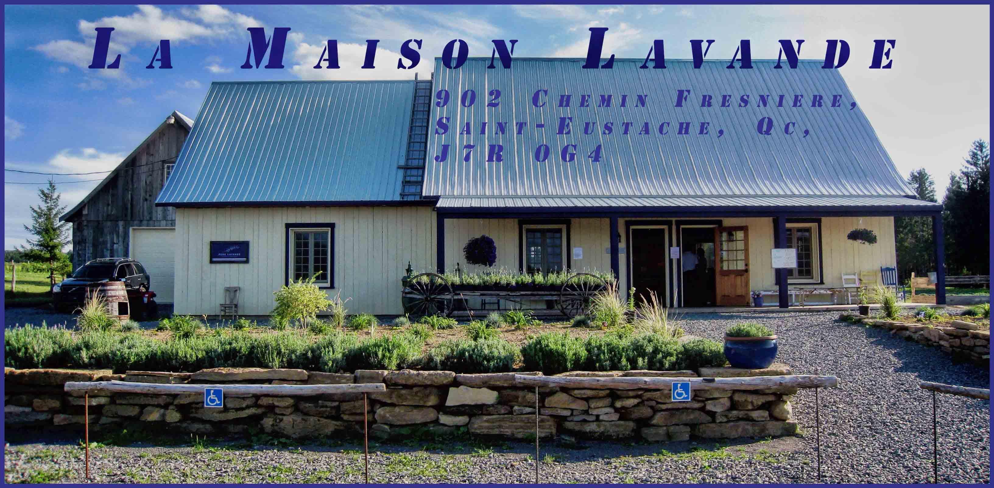 Quebec Lavender Producers: Bleu Lavande & La Maison Lavande – Free ...
