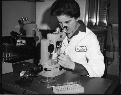 Cancer researcher Beatrice Mintz (b. 1921),