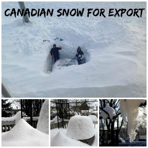 Canadian snow photo
