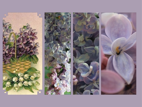 Lilac oil